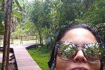 Fervedouro Do Alecrim, Sao Felix do Tocantins, Brazil