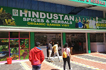 Hindustan Spices and Herbals, Idukki, India