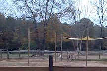 Tigers for Tomorrow, Attalla, United States