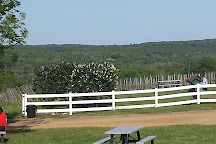 Cassidy Hill Vineyard, Coventry, United States