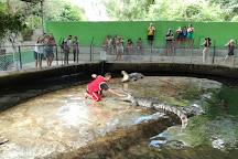 Samui Crocodile Farm, Ko Samui, Thailand