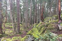 Petroglyph Provincial Park, Nanaimo, Canada