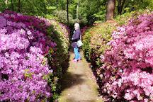 Rhododendronpark Bremen, Bremen, Germany
