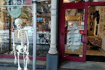 The Evolution Store, New York City, United States