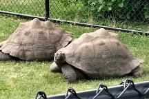 Como Park Zoo & Conservatory, Saint Paul, United States