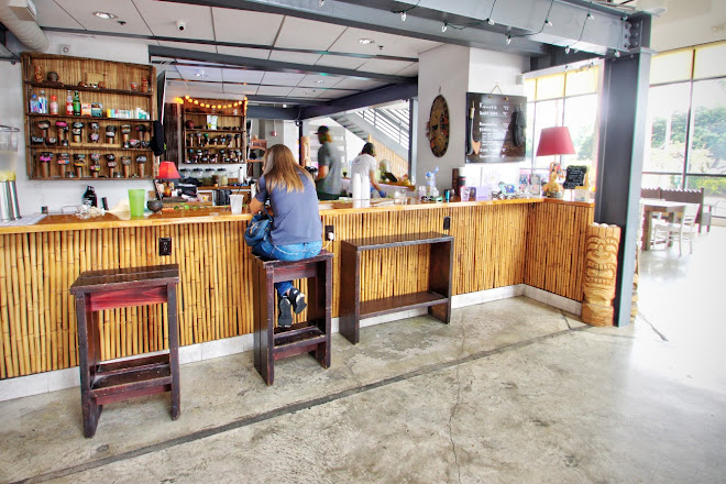 Visit Purple Lotus Kava Bar On Your Trip To West Palm Beach