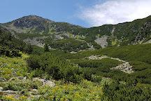 Retezat Mountains, Transylvania, Romania