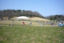 Musashi Kyuryo National Government Park, Namegawa-machi, Japan