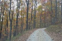 Buffalo Mountain Natural Area Preserve, Floyd, United States