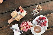 Sunny Ridge Strawberry Farm, Main Ridge, Australia