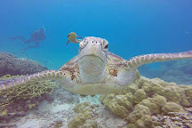Diveaway Fiji, Sigatoka, Fiji