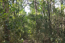 Terblans Nature Walk, Knysna, South Africa