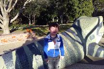 Kooloonbung Creek Nature Park, Port Macquarie, Australia