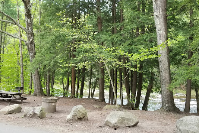 Visit Worlds End State Park on your trip to Forksville