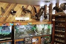 Woodlands Nature Station, Cadiz, United States