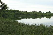 Plaze lake, Klaipeda, Lithuania