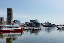 Baltimore Visitor Center, Baltimore, United States