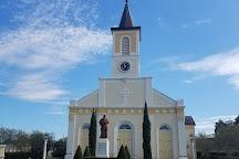 Evangeline Oak, Saint Martinville, United States