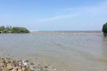 Ao Mahachai Mangrove Forest Natural Education Center, Samut Sakhon, Thailand