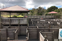 Yallingup Maze, Yallingup, Australia
