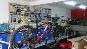 Silva Bikes 1