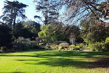 San Francisco Botanical Garden, San Francisco, United States
