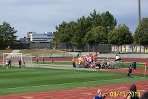 University of Illinois at Urbana-Champaign, Urbana, United States