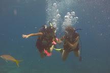 Blue Water Divers, Key Largo, United States
