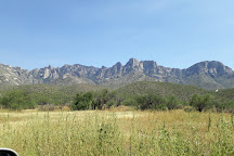 Catalina State Park, Tucson, United States