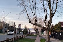 Mercado Fritz, Villarrica, Chile