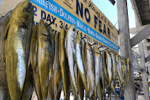 Key Largo Fishing Adventures, Key Largo, United States