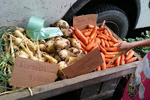 Brattleboro Farmers' Market, Brattleboro, United States