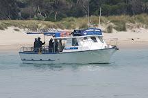 Timeout Fishing charters, Rye, Australia