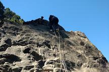 Padmaja Naidu Himalayan Zoological Park, Darjeeling, India