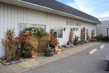 Dizzy Daisy Winery, Bad Axe, United States