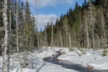 Kolvananuuro, Joensuu, Finland