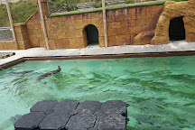 Cornish Seal Sanctuary, Gweek, United Kingdom