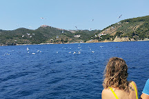 Alonissos Seacolours Dive Center, Patitiri, Greece