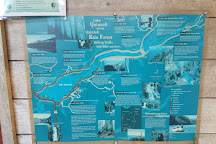 Lake Quinault, Quinault, United States
