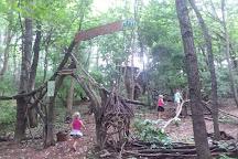 Boxerwood Nature Center & Woodland Garden, Lexington, United States