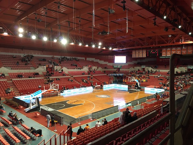 Antarès (Basketball)