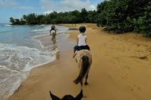 Ranch des 2 ilets, Deshaies, Guadeloupe