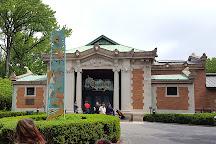 Bronx Zoo, Bronx, United States