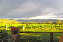 Leroux Creek Inn & Vineyards, Hotchkiss, United States