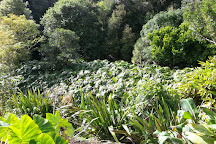 Whangarei Quarry Gardens, Whangarei, New Zealand