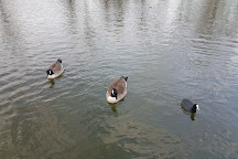 Victoria Park, Widnes, United Kingdom