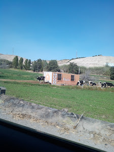 Bodega Zapata 4