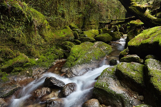 Shiratani Unsuikyo Gorge