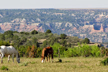 Cowgirls and Cowboys in the West, Amarillo, United States