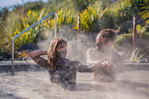 Hell's Gate Geothermal Reserve & Mud Spa, Tikitere, New Zealand